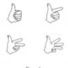 Les doigts, les mains