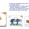Fichier de lecture Pemf  cycle 2, niveau 4 (CP-CE1)