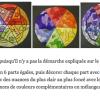 Cercle chromatique formes