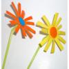 Le printemps-les fleurs