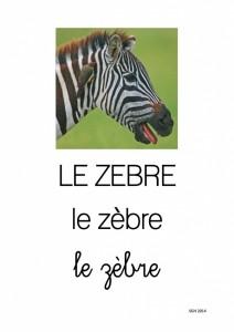 A poils ou a plumes - zebre