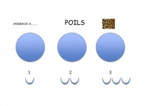 a poils ou a plumes1