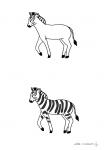 modeles-pate-a-modeler-zebre